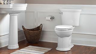 toilet repair installation