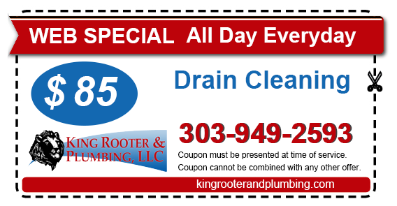 coupon drain cleaning denver